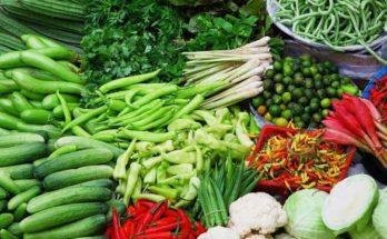 Industri Makanan Lokal Sehat Jadi Peluang Bisnis