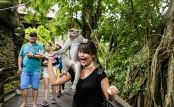 Alasan Pemerintah Larang Turis Asing Wisata ke RI
